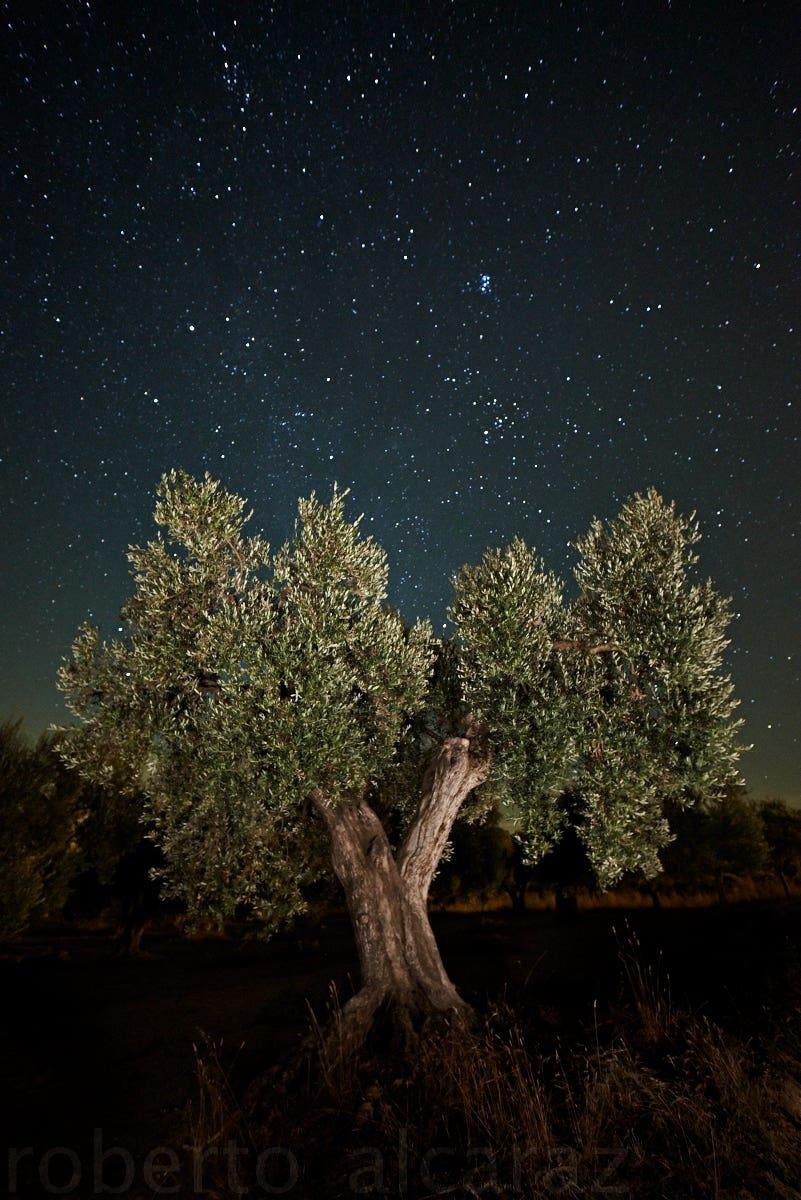 Fotografiar El Cielo Nocturno Seis Consejillos De Lo Más Paternales