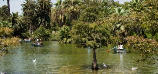 Canon EOS 200D - Estanque del Parque de la Ciutadella