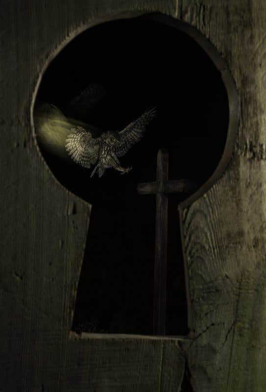 Primer premio Comportamiento - EL angel caido - Basilio Rubio
