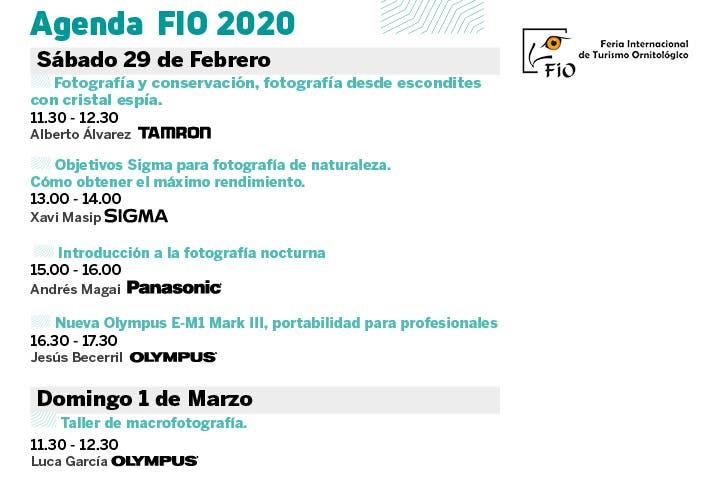 FIO 2020
